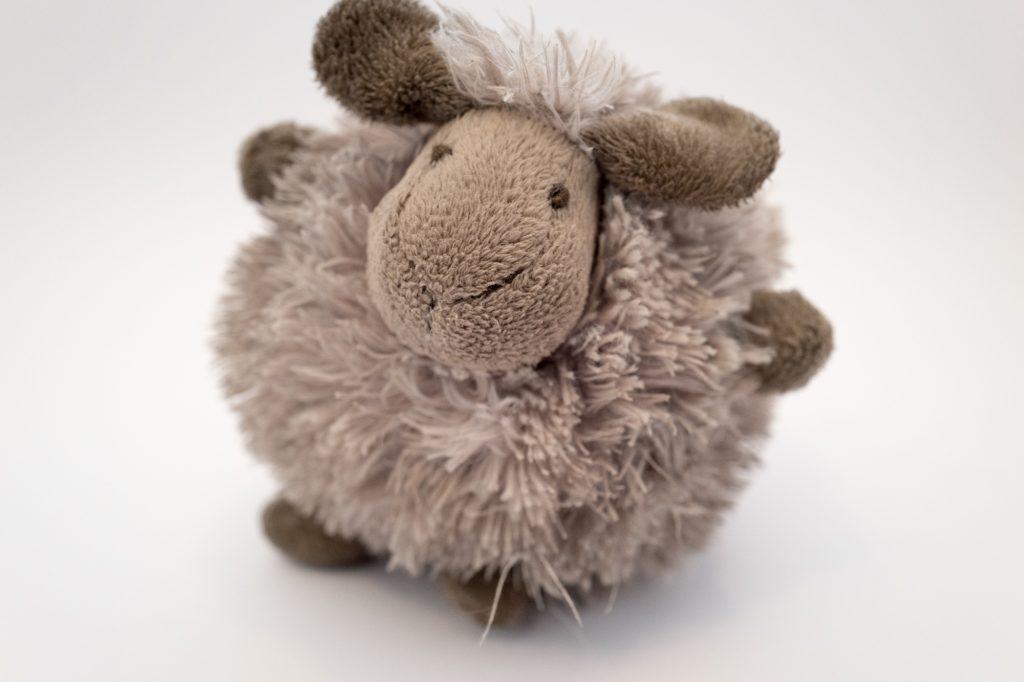Mungo & Maud - Sheep dog toy